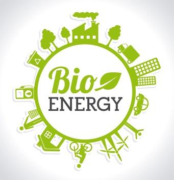 Bioénergie