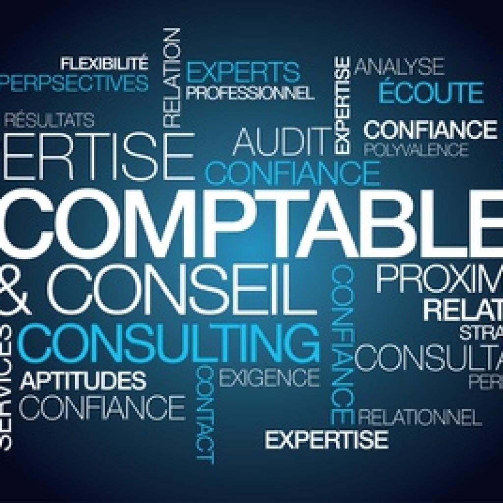 Expertise comptable conseil expert consulting nuage de mots